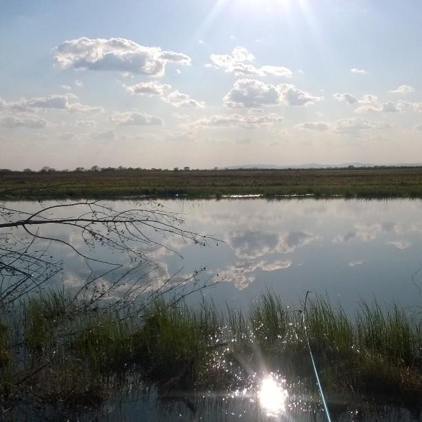Погода на неделю восточно казахстанской области